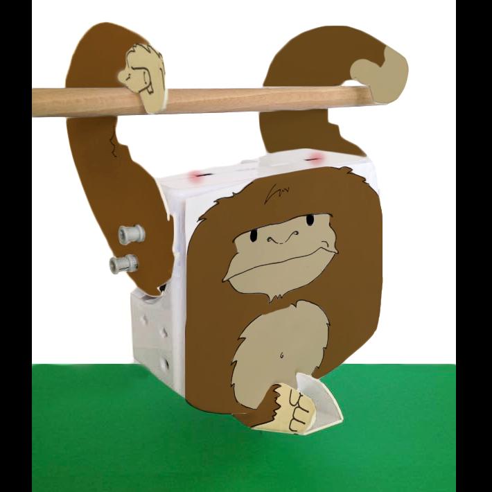 monkey_image1.png