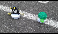 pingouin-tortue.png